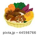 野菜 収穫イラスト 44598766
