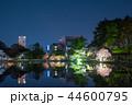 千葉公園 夜桜ライトアップ (千葉県千葉市中央区) 2018年3月 44600795