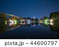 千葉公園 夜桜ライトアップ (千葉県千葉市中央区) 2018年3月 44600797