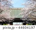 靖国神社 神門と桜 (東京都千代田区) 2018年3月 44604197