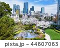 東京 六本木ヒルズ 毛利庭園の桜 44607063