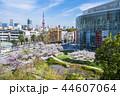 東京 六本木ヒルズ 毛利庭園の桜 44607064