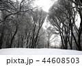 景色 風景 ゆきの写真 44608503