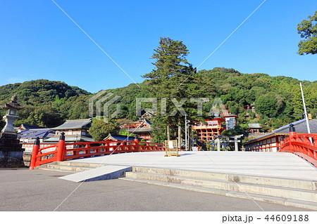 朝日を浴びる秋の祐徳稲荷神社(佐賀県鹿島市) 44609188