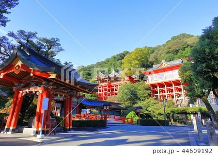 朝日を浴びる秋の祐徳稲荷神社(佐賀県鹿島市) 44609192