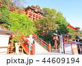 祐徳稲荷神社 神社 日本三大稲荷の写真 44609194