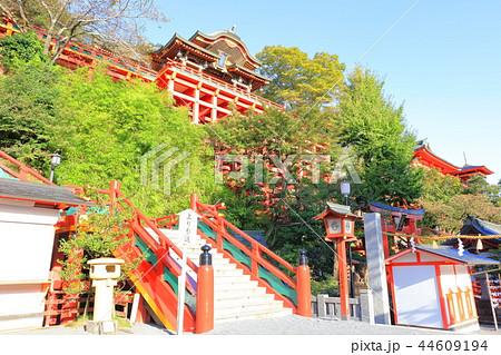 朝日を浴びる秋の祐徳稲荷神社(佐賀県鹿島市) 44609194