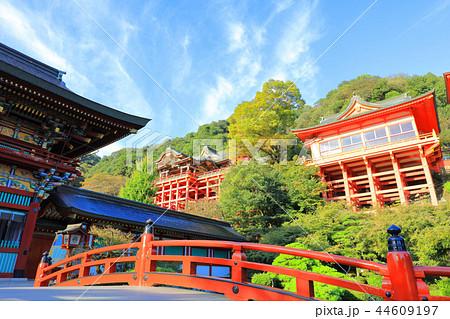 朝日を浴びる秋の祐徳稲荷神社(佐賀県鹿島市) 44609197