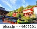 祐徳稲荷神社 神社 稲荷神社の写真 44609201