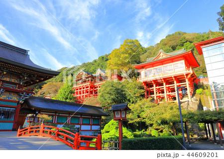 朝日を浴びる秋の祐徳稲荷神社(佐賀県鹿島市) 44609201