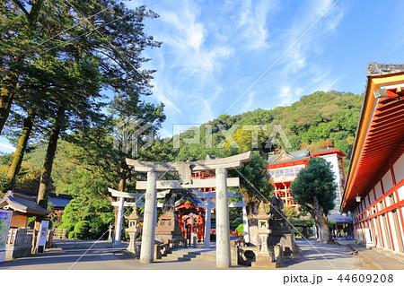 朝日を浴びる秋の祐徳稲荷神社(佐賀県鹿島市) 44609208