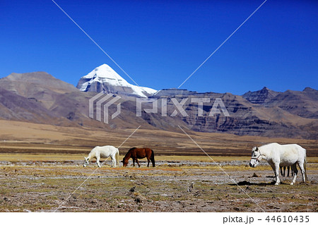 mountain landscape of the cliff in the Himalayas 44610435