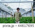 就農 農業 ハウス栽培 44617695