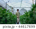 就農 農業 ハウス栽培 44617699