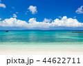 夏海 44622711