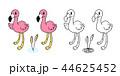 紅色フラミンゴ ベクター フラミンゴのイラスト 44625452