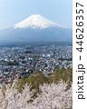 富士山 桜 染井吉野の写真 44626357