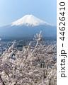 風景 富士山 桜の写真 44626410