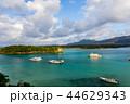 石垣島 川平湾 沖縄の写真 44629343