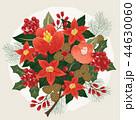 花 ベクター ポインセチアのイラスト 44630060