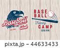 バット シンボルマーク ロゴのイラスト 44633433