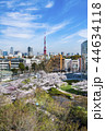 東京 六本木ヒルズ 毛利庭園の桜 44634118
