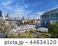 東京 六本木ヒルズ 毛利庭園の桜 44634120