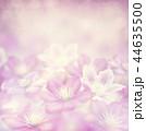 クレマチス お花 フラワーの写真 44635500