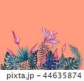 背景 花 芽のイラスト 44635874