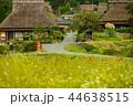 秋 風景 田舎の写真 44638515