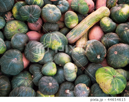 A lot variety colours and sorts of pumpkins. Heap of autumn harvest. 44654615