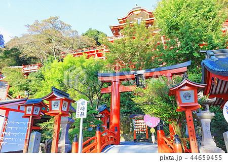 朝日を浴びる秋の祐徳稲荷神社(佐賀県鹿島市) 44659455