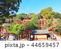祐徳稲荷神社 神社 神社仏閣の写真 44659457