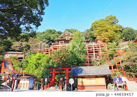 朝日を浴びる秋の祐徳稲荷神社(佐賀県鹿島市) 44659457