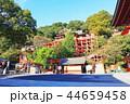 祐徳稲荷神社 神社 神社仏閣の写真 44659458