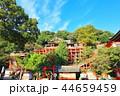 祐徳稲荷神社 神社 神社仏閣の写真 44659459
