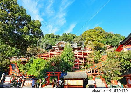 朝日を浴びる秋の祐徳稲荷神社(佐賀県鹿島市) 44659459