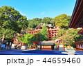 祐徳稲荷神社 神社 神社仏閣の写真 44659460