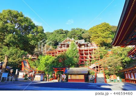 朝日を浴びる秋の祐徳稲荷神社(佐賀県鹿島市) 44659460