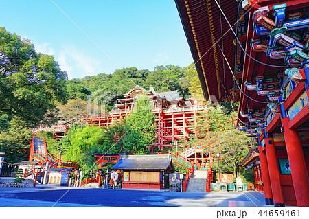 朝日を浴びる秋の祐徳稲荷神社(佐賀県鹿島市) 44659461
