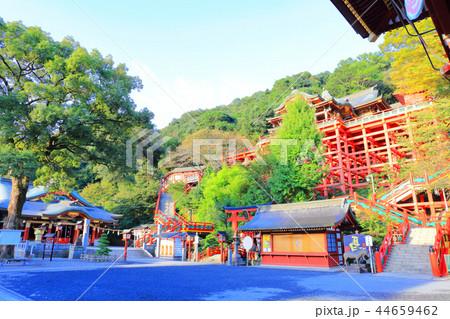 朝日を浴びる秋の祐徳稲荷神社(佐賀県鹿島市) 44659462