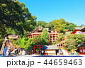 祐徳稲荷神社 神社 神社仏閣の写真 44659463