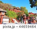 祐徳稲荷神社 神社 神社仏閣の写真 44659464