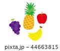 果物(フルーツ)コーナーのイラスト 44663815