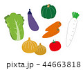 お野菜コーナーのイラスト 44663818