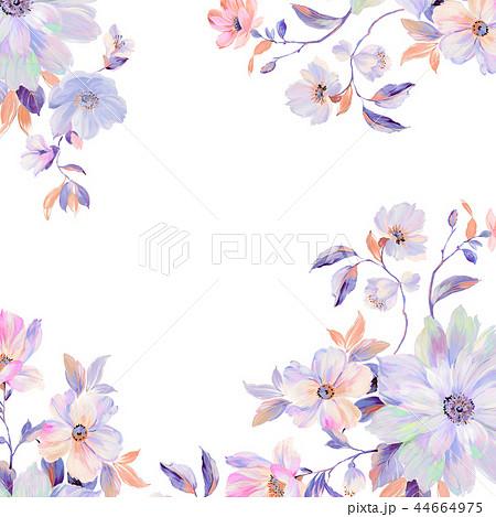 花 フラワー お花 44664975