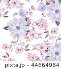 44664984