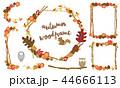 フレーム 秋 植物のイラスト 44666113