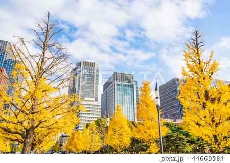 【東京都】都市風景 44669584