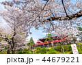 上野恩賜公園 春 満開の桜 (東京都台東区) 2018年3月 44679221
